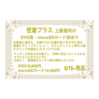上級者向け密着プラス DVD版