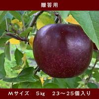 期間限定販売!りんご【レッドゴールド】『Mサイズ・23~25玉入り(贈答用)』【5㎏×2箱】《北海道壮瞥町産》