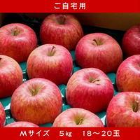 期間限定販売!りんご【サンふじ】『Mサイズ・18~20玉入り(ご自宅用)』【5㎏】《北海道壮瞥町産》