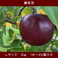 期間限定販売!りんご【レッドゴールド】『Lサイズ・18~20玉入り(贈答用)』【5㎏×3箱】《北海道壮瞥町産》