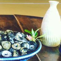 はまぐり堂「春の肴・浜茹で黒つぶ貝1kg  単品」・送料込み