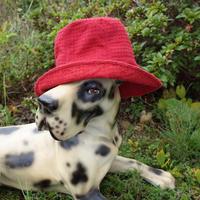 """""""ELLE"""" Vintage Designed Hat"""