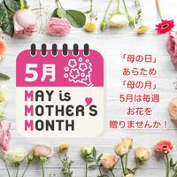母の月スペシャル  プチ定期便 4回コース(税込・送料込)