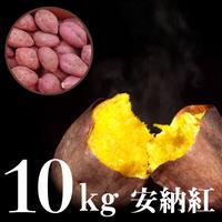 安納紅(あんのうべに) 10kgセット
