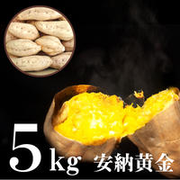 安納黄金(あんのうこがね) 5kgセット