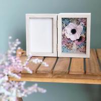 photo frame *pink anemone*