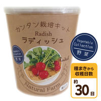Natural Farm カンタン栽培キット/ ラディッシュ 栽培セット