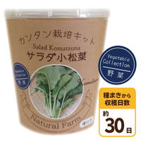 Natural Farm カンタン栽培キット/ サラダ小松菜 栽培セット
