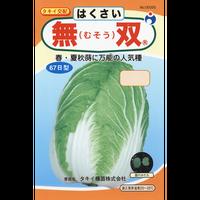 無双白菜 / 送料込 種セット 5g ギフト