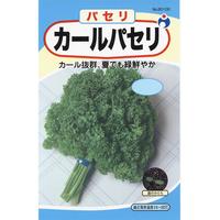 カールパセリ / 送料込 種セット 7g ギフト