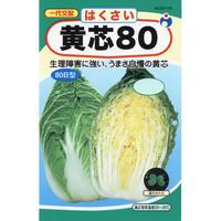 一代交配黄芯80白菜 / 送料込 5g ギフト
