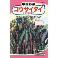 コウサイタイ(紅菜苔) / 送料込 10g ギフト
