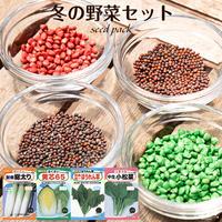 冬の野菜セット(だいこん/はくさい/ほうれんそう/こまつな/) / 送料込 種セット 46g ギフト