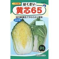 一代交配黄芯65白菜 / 送料込 6g ギフト