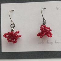 ruby珊瑚の耳飾り