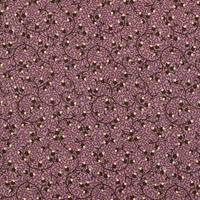 EVELYN'S HOMESTEAD spreading phlox 110cm幅【10cm単位】31563−18