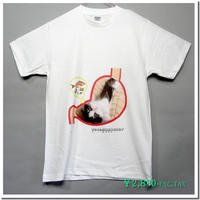 仔猫のデザインTシャツ(ことわざ編 Part3) 着心地の良い定番Tシャツに人気のスコティッシュフォールドの仔猫をモチーフに有名なことわざをパロディ化したコミカルなデ