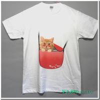 はにかみ仔猫Tシャツ(チンチラ・赤ショルダー)