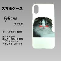 はにかみこねこのスマホケース(IphoneX/XR スコティッシュ)白色のプラスチック(ポリカーボネート)ツヤありに人気のスコティッシュフォールドの仔猫のプリントです。