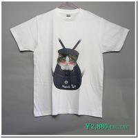 はにかみ仔猫Tシャツ(スコティッシュ・青リュック)