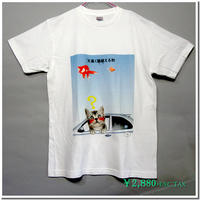 仔猫のデザインTシャツ(ことわざ編 Part3) 着心地の良い定番Tシャツに人気のアメリカンショートヘアの仔猫をモチーフに有名なことわざをパロディ化したコミカルなデザイン。