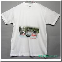 仔猫のデザインTシャツ(飲酒編)着心地の良い定番Tシャツにスコティッシュフォールトとノルウェージャンフォレストキャットの仔猫をモチーフに有名な標語をパロディ化したコミカルなデザイン