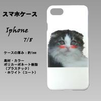 はにかみこねこのスマホケース(Iphone7/8 スコティッシュ)白色のプラスチック(ポリカーボネート)ツヤありに人気のスコティッシュフォールドの仔猫のプリントです。