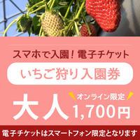 ☆数量限定☆いちご狩り入園券(4月24日~分) 大人(中学生以上) オンライン購入特典付き