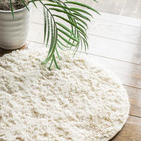 SECTION COLOR RUG ф55