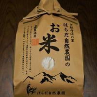 八分つき2.5kg(令和元年産・自然農法無農薬栽培切り替え2年目・にこまる)