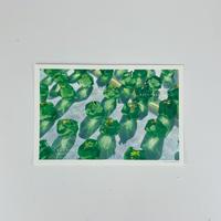 ハラペコラボのポストカード  -green garnet
