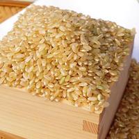 「つや姫」玄米5kg 山形県産特別栽培米
