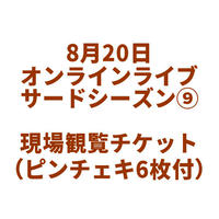 8月20日 オンラインライブ現場観覧チケット(サードシーズン⑨)※ピンチェキ6枚つき [限定11枚](開催中止の場合はクーポン返金となります)
