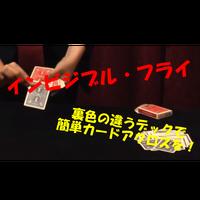 【ダウンロード:レクチャー】インビジブル・フライ(匠)