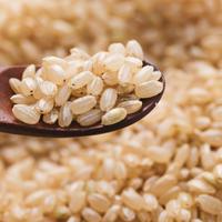 【高級品種】めざめ生玄米(1ヶ月分・6合・約1kg)