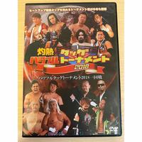 【発掘DVD】HEAT-UP DVD Vol.75 2018.01.28 パワフルタッグトーナメント2018 一回戦