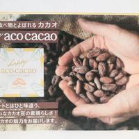 happy acocacao