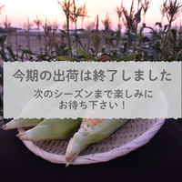【愛知県碧南市産】とうもろこし(スイートコーン)5㎏箱・ 15本入【味来】