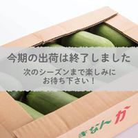 【愛知県碧南市産】早生かりもり 4㎏箱・Ⅼサイズ(10~11玉入)【愛知の伝統野菜】