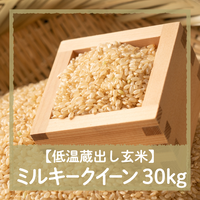 【令和3年8月21日(土)引き渡し】低温蔵出し玄米ミルキークイーン30kg
