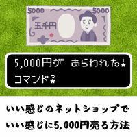 いい感じのネットショップで、いい感じに5,000円売る方法