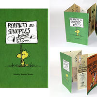 JAY HOWELL PEANUTS AND SNOOPIES FOLD OUT ART ZINE