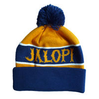 ANTI HERO JALOPI POM BEANIE