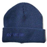 ANTI HERO BLACKHERO LONG CUFF BEANIE