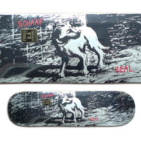 REAL MAX SCHAAF CANINES DECK (8.5 x 32.25inch)