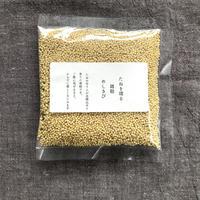 自家採種 雑穀 めしきび 100g
