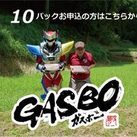 """超ロング粗挽きウインナー """"ガスボ-"""" 1本100g×10本×10パック"""