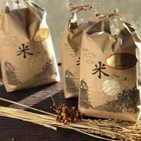 天日干し無農薬(特別栽培米)コシヒカリ【白米:2キロ】