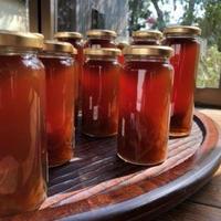 自然農法で栽培された生姜をがっつり使ったジンジャーエールの素 245ml