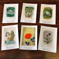 ポストカード6枚セット(春)
